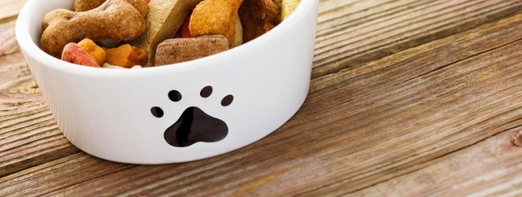 Kvalitatīvas suņu barības kritēriji