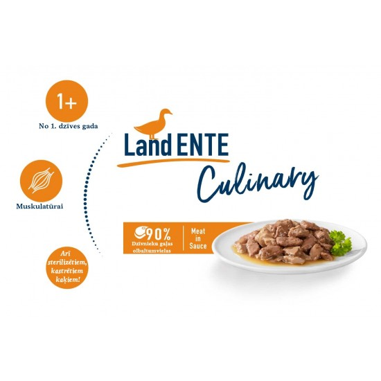 Happy Cat Meat in Sauce - Culinary Land-Ente