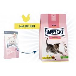 Happy Cat Young Kitten Land-Geflügel